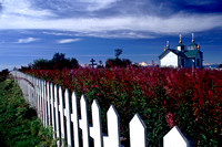 Church and Fireweed
